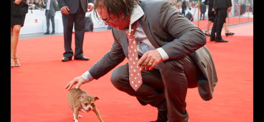 Miki Rurk odlučio da otvori azil za pse u Rumuniji