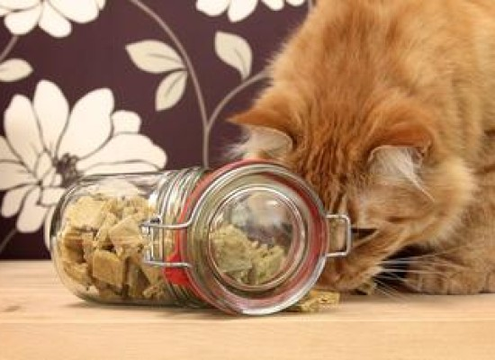 Ukusni krekeri za mačke