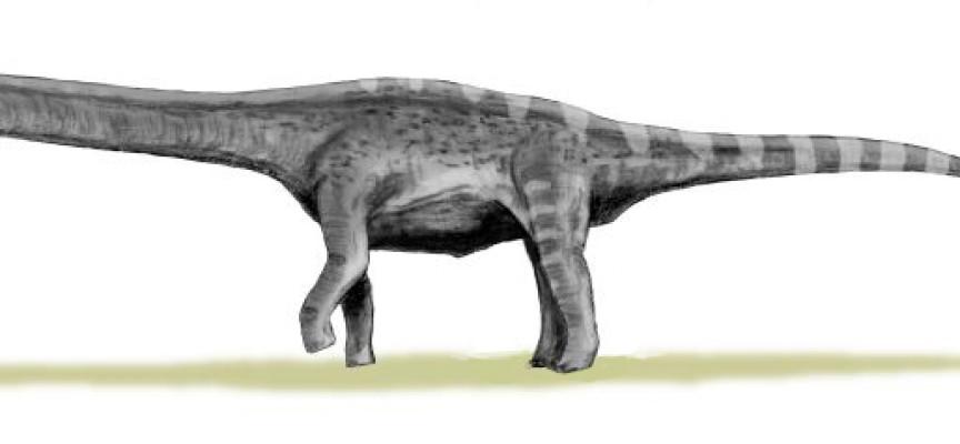 Digitalno oživljavanje najvećeg dinosaurusa svih vremena