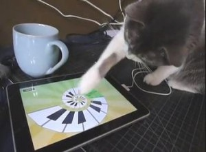 macka iPad