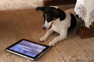 pas iPad