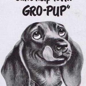 reklama za hranu za pse