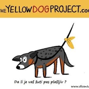10. Slika - plašljiv pas
