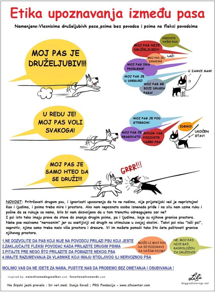 16. Poster - upoznavanje između pasa