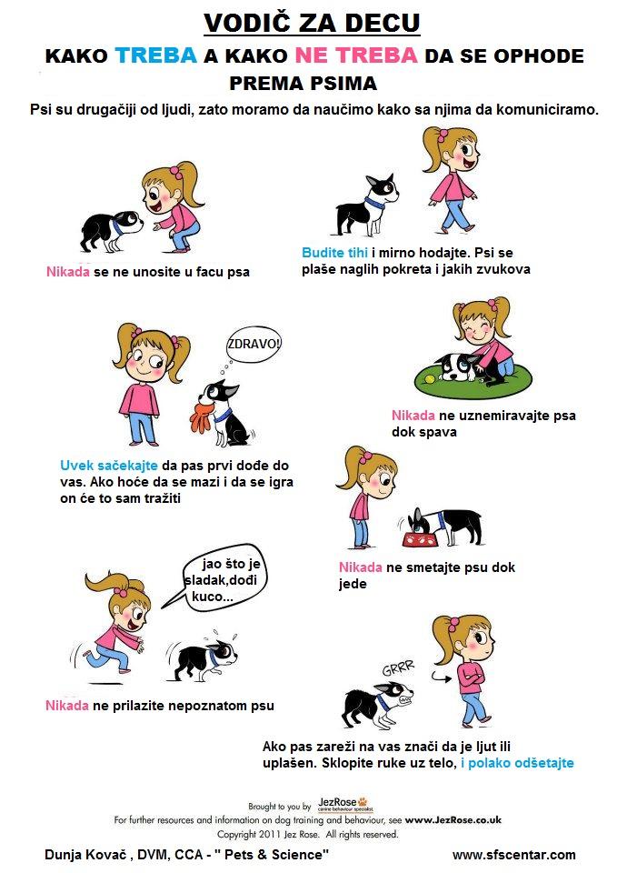 17. Vodič za decu - kako da pravilno priđu psu