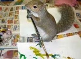 Veverica koja voli da slika (VIDEO)
