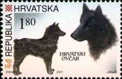 hrvatski.ovcar.marka