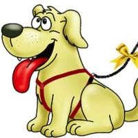 """""""Žuti pas"""" u Srbiji: Žuta traka – univerzalni znak da psu treba prostora"""