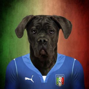 Italija - kane korso