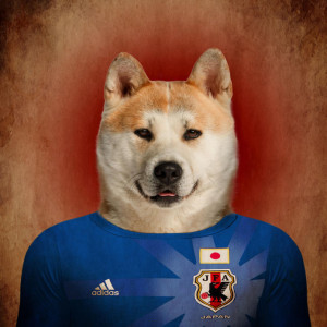 Japan - akita inu