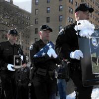 Pitsburg odao počast policijskom nemačkom ovčaru Roku (VIDEO)