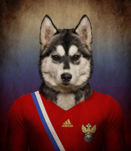 Rusija - sibirki haski