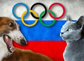 8 ruskih rasa mačaka i pasa