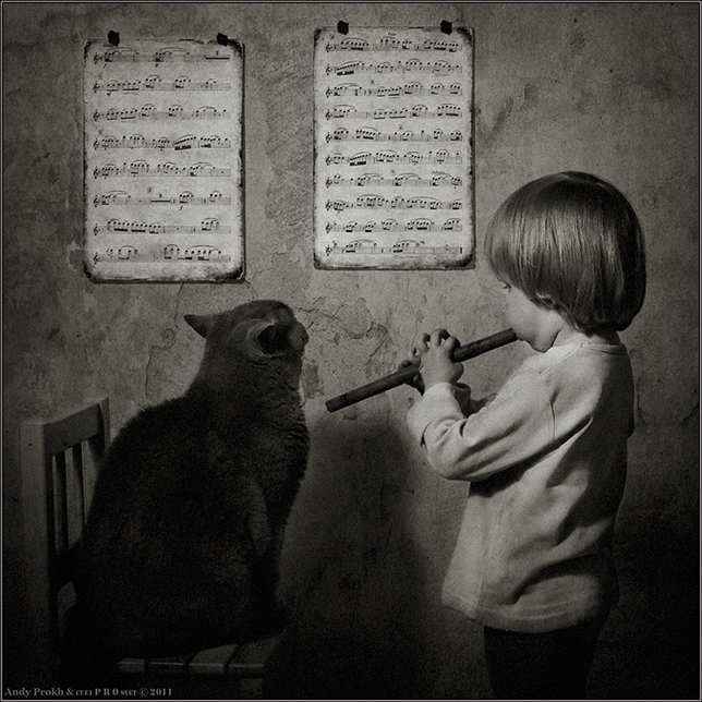 girl-and-her-cat-music