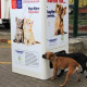 Kontejner za reciklažu koji hrani ulične životinje