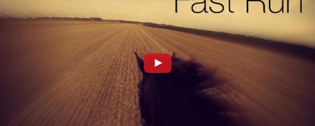 Kako izgleda jahanje na brzom konju? Pogledajte video! :)