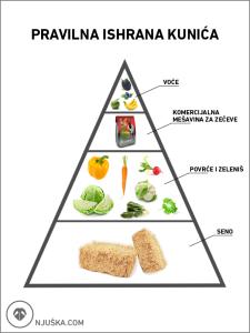 piralidalna ishrana kunića