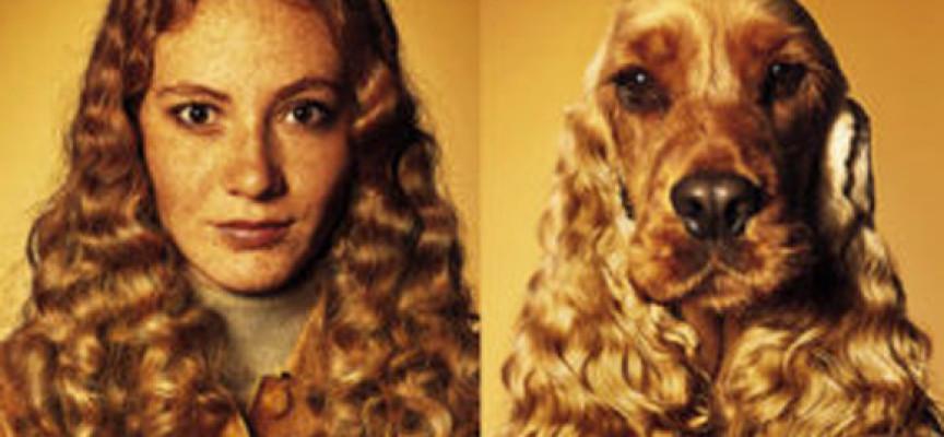 Kakav pas takav i vlasnik: Šta odabir rase psa govori o vašoj ličnosti?