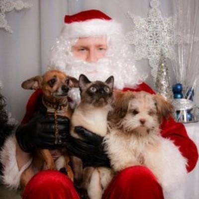 Deda Mraz za kućne ljubimce