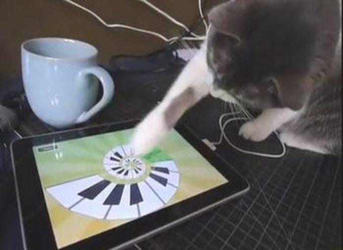 iPad aplikacije za ljubimce
