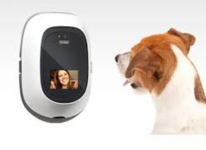 PetChatz – Prvi videofon za ljubimce