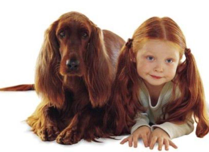 Top 10 pasa za porodicu sa decom