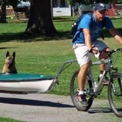"""Pas koji ide u """"šetnju"""" u kanuu"""
