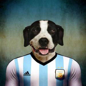 Argentina - dogo argentino