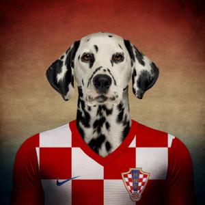 Hrvatska - dalmatinac