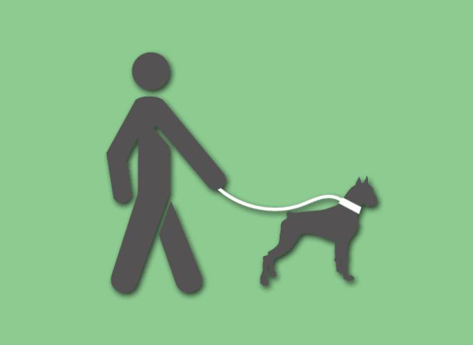 Kako se ponašaju odgovorni vlasnici pasa?